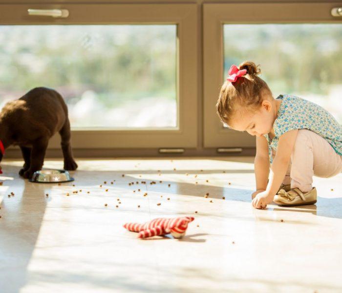 Zasada 5 sekund – czy można zjeść jedzenie upuszczone na podłogę?